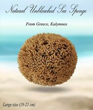 Natural Greek Sea Sponge From Kalymnos, unbleached,Best Quality Large No 8'