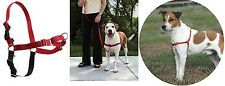 Easy Walk Dog Harness - XS - XL - easy to fit & easy to use walking