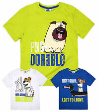 Boys Official The Secret Life Of Pets Short Sleeved Cotton T-Shirt New Kids Tops