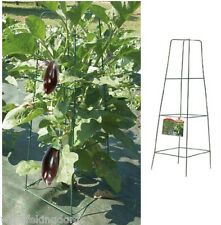 Garden Obelisk Planter Planting Trellis Climbing Plants Grower Vegetables Beans