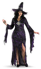 Sorceress Plus Size Womens Sexy Halloween Costume