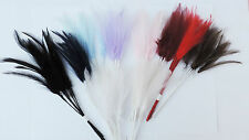 Narrow Feather Pick Floristry/Millinery/Bridal/Crafts White/Ivory/Blue/Red ect