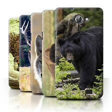 STUFF4 Back Case/Cover/Skin for Samsung Galaxy R/I9103/North America Animals
