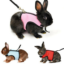 S-L Cute PET Rat Ferret Guinea Rabbit Meshed Harness Soft Comfort Leash Lead