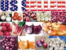 ORGANICALLY GROWN 18 Varieties Italian Onion Seed Heirloom NON-GMO RARE Sweet US
