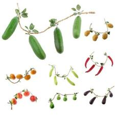 Delicate Manmade Fruit / Vegetable Toy Household Kitchen Wall Hanging Ornament