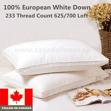 100% Cotton European White Down Pillow 1pair (2 Pieces) Filled in Canada