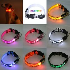 Rechargeable Camouflage LED Light Up Dog Pet Night Safety Bright Flashing Collar