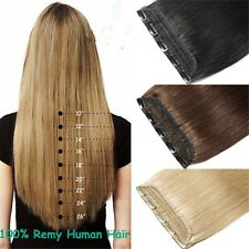 170g Deluxe Thick 5Clips One Hairpiece Virgin Clip In Real Human Hair Extensions