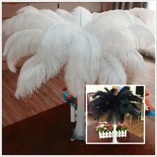 Wholesale 10-100pcs High Quality Natural OSTRICH FEATHERS 6-24 inch/15-60cm