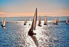 Sailboat Regatta In Paradise - Boat Poster Print - Sailing Boats On The Water