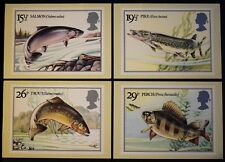 PHQ65 postcard British River Fishes, Salmon, Pike, Trout, Perch, 1983, good cond