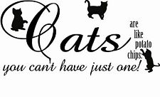 Cat Lady Lover a Quote Saying Wall Art Sticker Decal Pet Word Present Gift Pussy