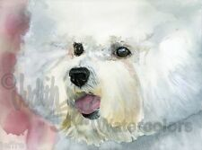 Bichon Frise Dog Art Print of Watercolor Painting Judith Stein Signed CURLY CUE