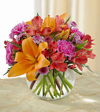 Light of My Life Bouquet by FTD. C6-4863. Fresh Flower Delivery by Florist