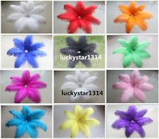 Brand new 50-100pcs 8-10 inch / 20-25 cm ostrich feathers multicolor selection