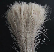 Wholesale 10/20/50/100pcs beautiful white peacock tail feathers 10-12 inches