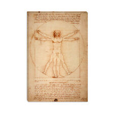 Vitruvian Man (1492) Leonardo da Vinci Canvas Print Painting Reproduction
