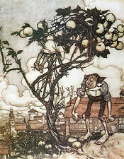 Arthur Rackham BOOK OF PICTURES 1913 Ref 29 PRINT A4 or A5 Size Unframed