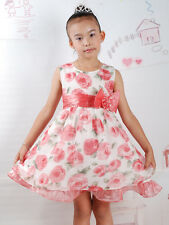 New Girls Flower Party Pageant Cream White and Pink Rose Dress in 12M 2 3 4Years