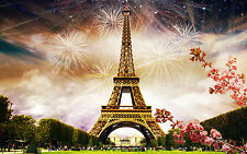 Fireworks in Paris  Home Decor Canvas Print, choose your size.
