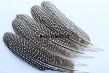 wholesale, 10-270pcs beautiful natural color pheasant feather wings 6-8 inches