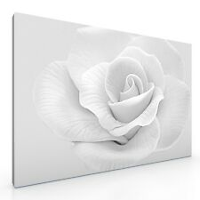 "Large Pale Rose Flower Canvas Picture Print Floral Artwork. 20""x30"". Wall Art"