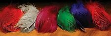 TEAL DUCK FEATHERS -  Beautiful Barred Dyed -- Fly Tying