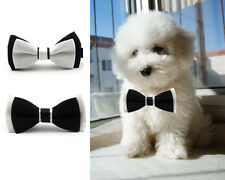 Adorable Dog Cat Pet Puppy Kitten Bow Tie Necktie Collar Clothes(Black/White)