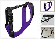 ☆ Canicross skijoring multi-sport equipment with bungee line belt dog harness