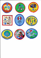 Obsolete Girl Guide Interest Badge - Big Choice