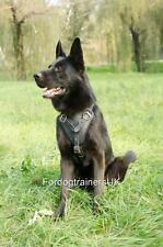 German Shepherd Harness UK | German Shepherd Training Dog Harness For Schutzhund