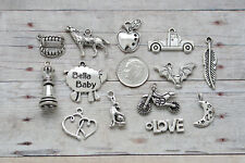 10 pc Silver Twilight Inspired Charm Pendant Lot Set Collection / Wolf Vampire