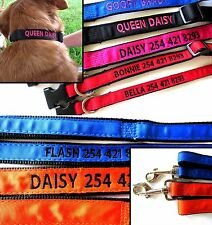 Personalized Embroidered Dog Collar and Matching Leash combo GO GO CUTE PUPPY