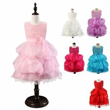 Fancy Toddler Girls Princess Dress Flower Lace Rose Embroidered Wedding Party