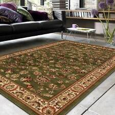 IST a Green SEVEN SIZES Persian Traditional Designer Floor Rug Carpet