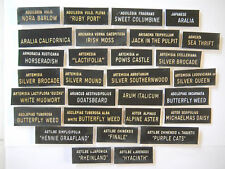 """Plant ID Labels Engraved Plastic you choose 29 varieties """"A"""" AQUILEGIA - ASTILBE"""
