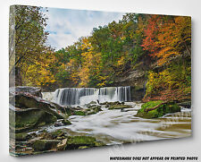 X LARGE CANVAS Waterfall Deep Forest Yellow Green Trees Photo Picture Wall Art