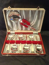 Vintage Cased Set 6 Silver Plated Fruit Spoons & Serving Spoon EPNS - Gleaming!