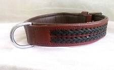 Pstore Braided Leather dog Collar Brass Fitting LDC-111 Brown