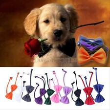 10PCS Lovely Cute Butterfly Bow Tie For Dog Puppy Cat Pet Necktie Neck Collar