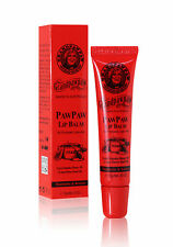 Grand Pawpaw Lip Balm with Manuka Honey 20+, Bulk Buy