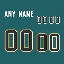 Jacksonville Jaguars Football Teal Jersey Customized Number Kit un-sewn