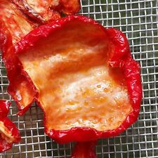 Bhut Jolokia Ghost - Pack 10+ seeds and 2-3 fresh organic sun dried pepper pods