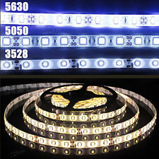 3528 5050 5630 5M White/Warm White 300 LED 12V Flexible Strip Light IP65 & IP20