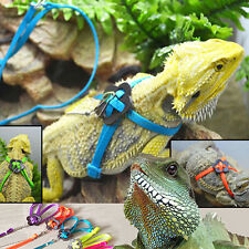 Reptile Lizard Adjustable Strap Harness Safety Outdoor Walking Leash up-to-date