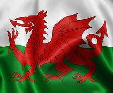 Wales Flag Y Ddraig Goch Large 5ft x 3ft Bale Welsh Wizard Euro Football Rugby