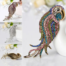 Jewelry Multicolor Rhinestones Crystal Parrot Bird Pendant - Brooch Pin Fancy