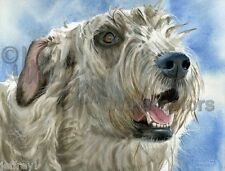 """Irish Wolfhound Dog Art Print of Watercolor Painting """"Colossal Canine"""" k9stein"""