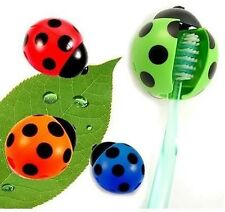 Ladybug Toothbrush Holder  container Rack With suction cups bathroom home decor